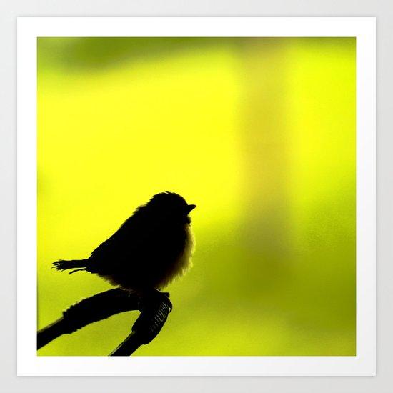 Baby Bird In Early Summer  Art Print