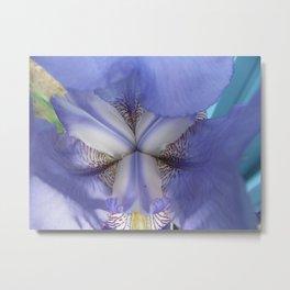 Into The Iris - 2 Metal Print