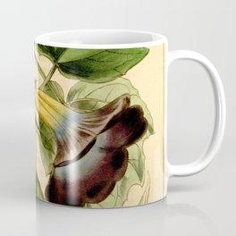 Thunbergia chrysops Coffee Mug