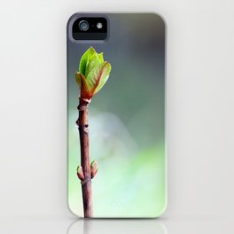 Rise of the Hydrangea iPhone Case