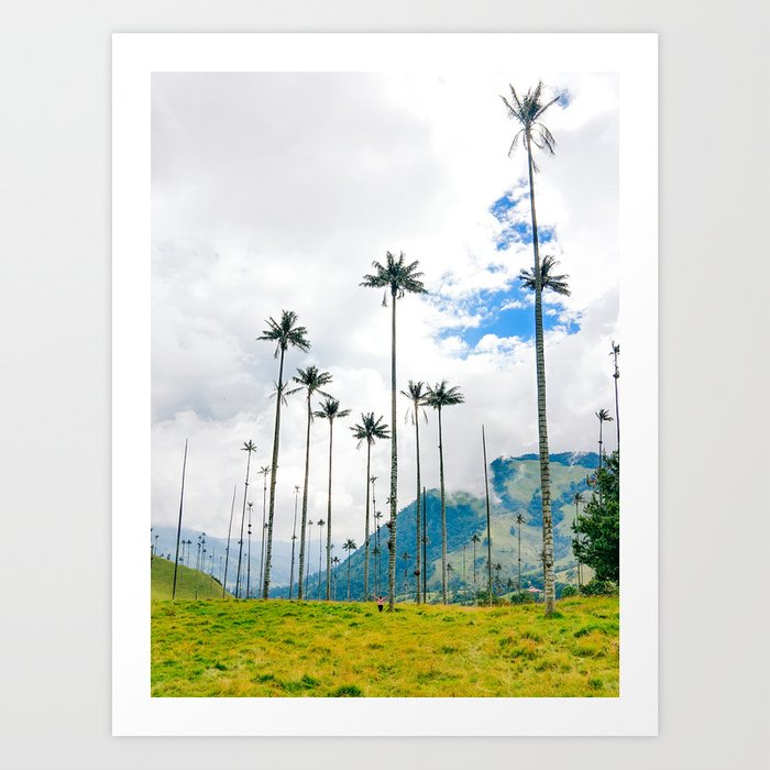 Palms in the Cocora Valley Fine Art Print Art Print
