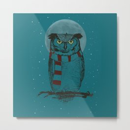 Winter Owl II Metal Print