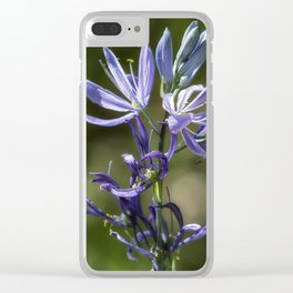 Camas Passages Clear iPhone Case