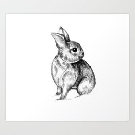 Bunny #4 Art Print