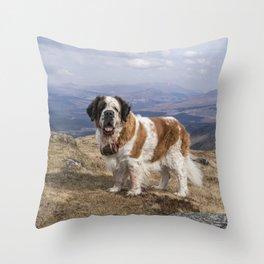 St Bernard dog on the mountain Throw Pillow