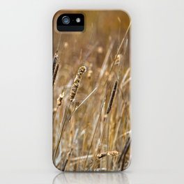 Wetlands Marsh in the Spring iPhone Case
