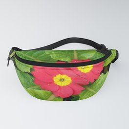Little red primula flower Fanny Pack
