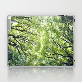 Green Maples Laptop & iPad Skin