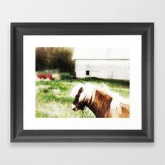 Mr. Ed Framed Art Print
