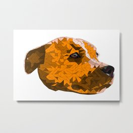 Max the Staffy Metal Print