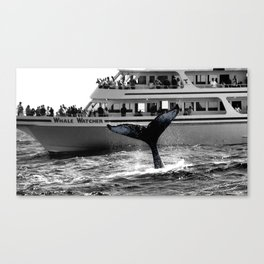 A Whale Of A Tale photography Canvas Print