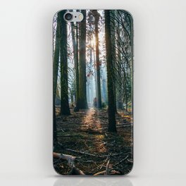 The woods are deep iPhone Skin
