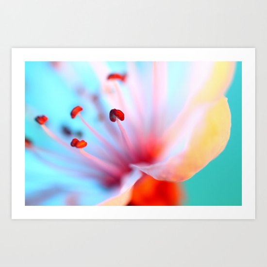 Blossom in Blue Art Print