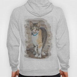 CALICO CAT WATERCOLOR Hoody