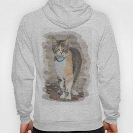 CALICO CAT WATERCOLOR Hoody