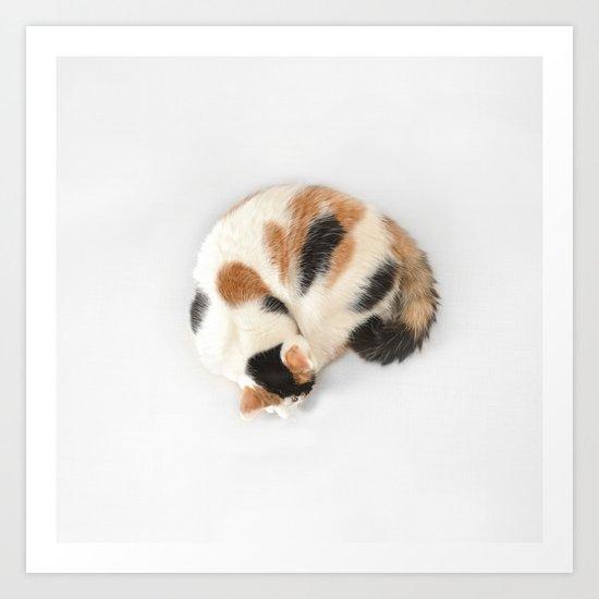 Sleeping Calico Cat Art Print
