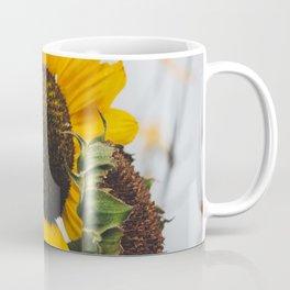 Sunflower Season Ends Coffee Mug