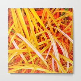 Yellow Leaves of Grass Metal Print