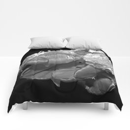 Eros and Death in Black & White Comforters
