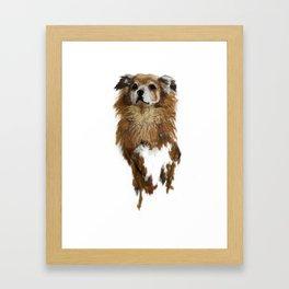 rossi foxy Framed Art Print
