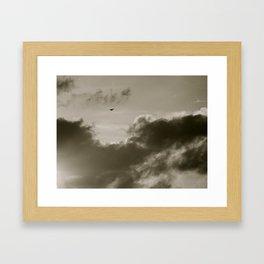 Lonely Bird Framed Art Print