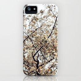 Fading autumn iPhone Case