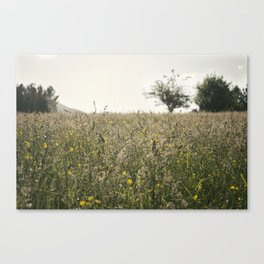 paisaje Canvas Print