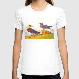 Richardson's Jager Bird T-shirt