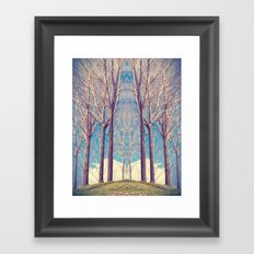 The nature of symmetry  Framed Art Print