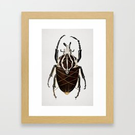 """""""Stifled""""- Painting of Goliath beetle wrapped in gold string Framed Art Print"""