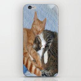 Sleeping Sweeties iPhone Skin