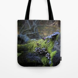 Forest decay Tote Bag