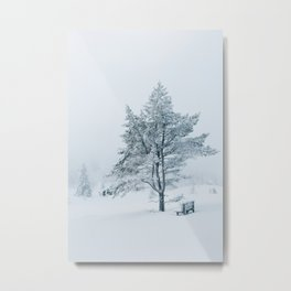 White Winter - Snow-Covered Bench and Tree in Norwegian National Park Metal Print