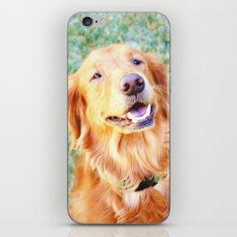 Picturesque iPhone Skin