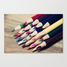 Colorful Life 2 Canvas Print
