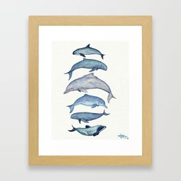 """Rare Cetaceans"" by Amber Marine - Watercolor dolphins and porpoises - (Copyright 2017) Framed Art Print"