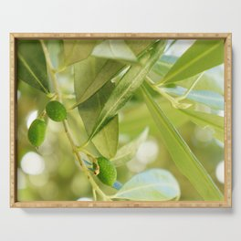 Olive Grove Serving Tray