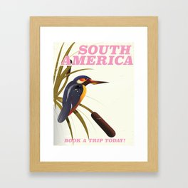 South America hummingbird vintage travel poster Framed Art Print