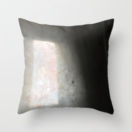 Fallen Light Throw Pillow
