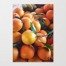 Beautiful Fruit - Oranges Canvas Print