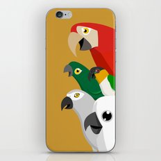 Loud Parrots iPhone & iPod Skin