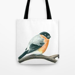 Bullfinch bird Tote Bag
