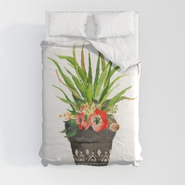Potted Succulent Comforters