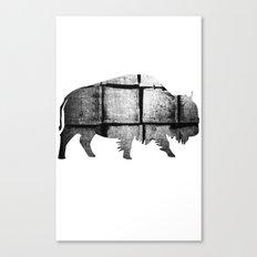 Buffalo (The Living Things Series)  Canvas Print