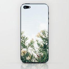 Neutral Spring Tones iPhone Skin