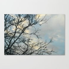 Scarred Skys Canvas Print