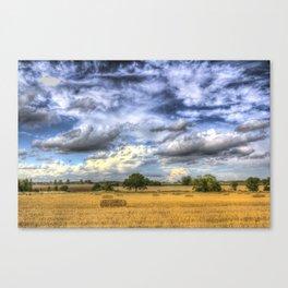 Summer On The Farm Canvas Print