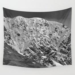 Fresh Snow in Portage Valley, Alaska - B & W Wall Tapestry