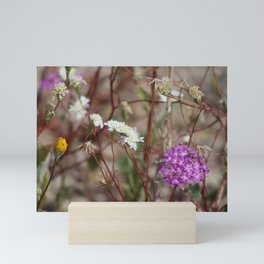 Desert Wildflowers at Coachella Wildlife Preserve Mini Art Print