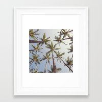 palm trees Framed Art Prints featuring Palm Trees  by Bree Madden